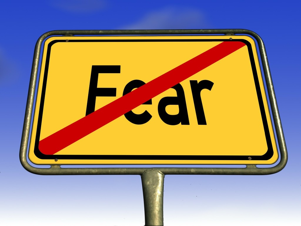 What are you afraid of?  What is holding you back?  Each of us has our own fears.  Here are some ideas on what to do about your fear and some Bible verses to help you punch your fear in the face!