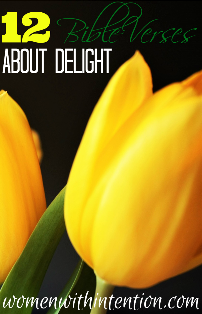 My One Word for 2016 is delight. One reason I chose delight is that I want to incorporate more Scripture into my life in 2016. The word delight is mentioned in the Bible several times.