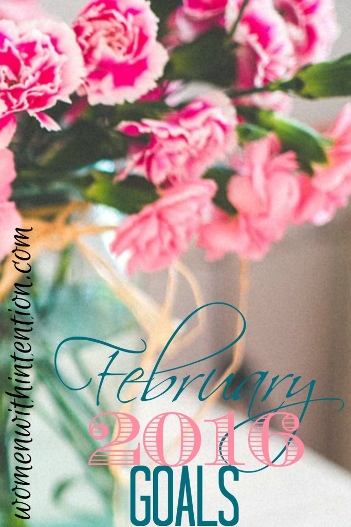 February 2016 Goals & January 2016 Recap
